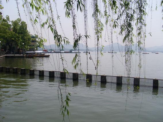 出租车,杭州一张靓丽的名片(原创散文) - 高山流水 - 高山流水