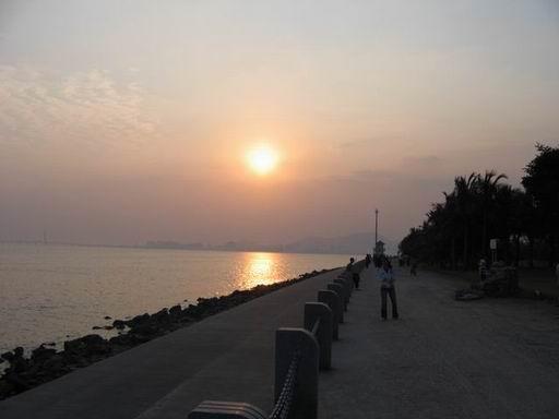 深圳福田红树林国家级鸟类自然保护区