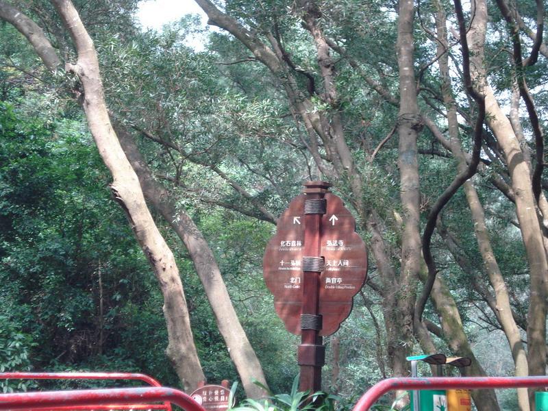 深圳仙湖导游图深圳动物园导游图深圳光明农场导游图
