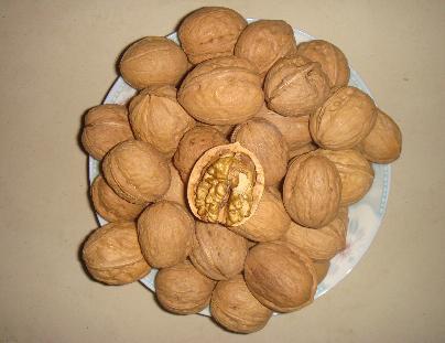 农家自种的各种五谷杂粮 食品特产