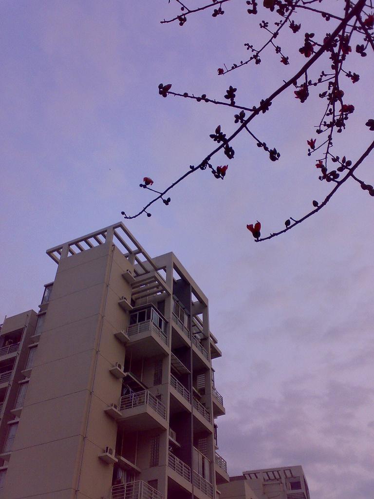 富通城40平平面单身公寓装修日记 富通城