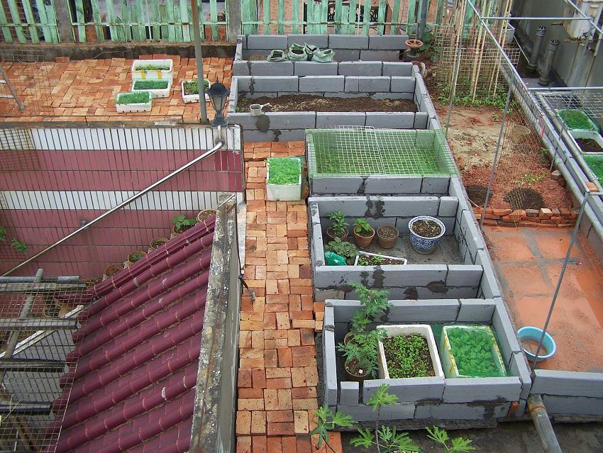 别墅菜园景观设计