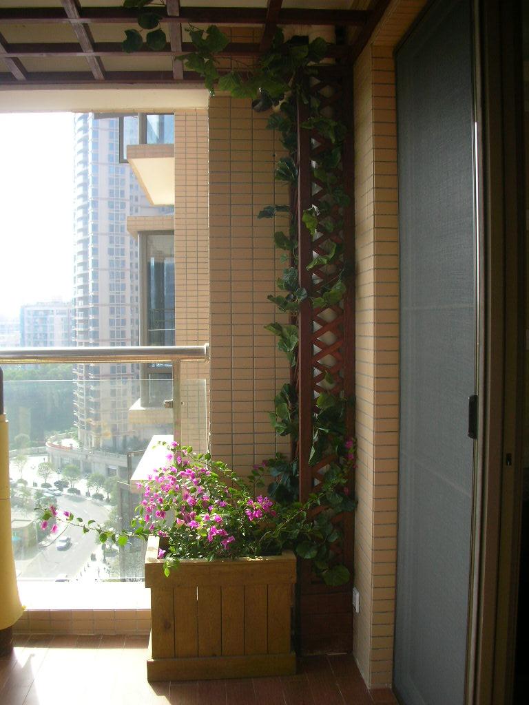 防腐木吊顶,花架,木地板