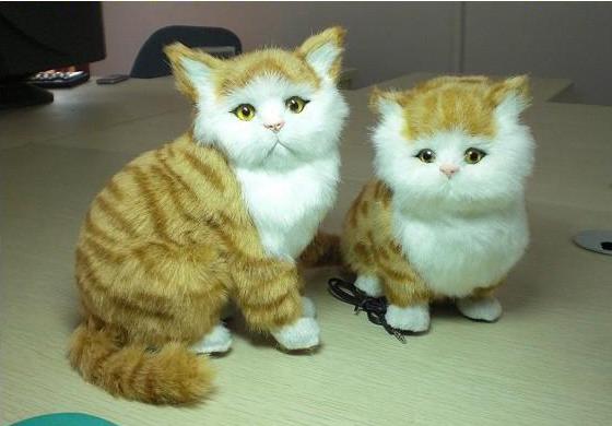 壁纸 动物 猫 猫咪 小猫 桌面 560_390