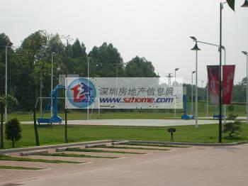 惠州 奥林匹克花园 运动会