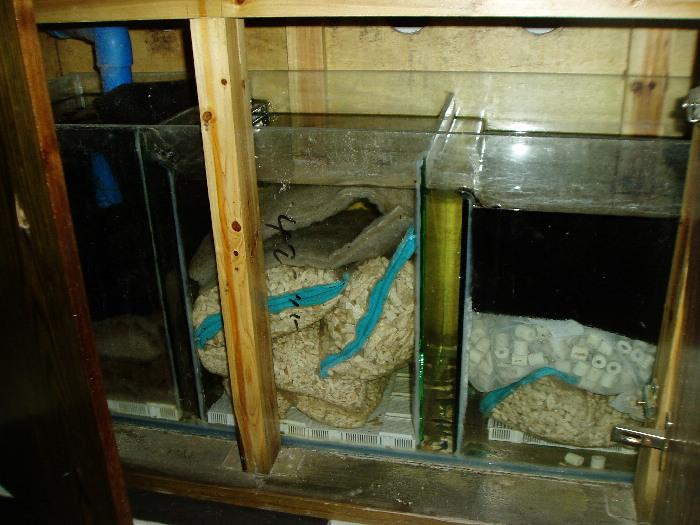 自制鱼缸外滤桶