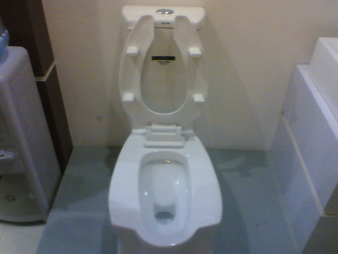 马桶和蹲厕