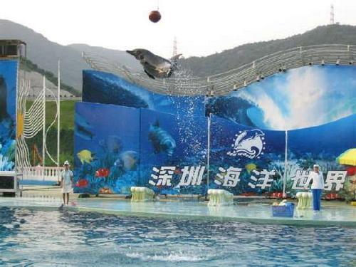 壁纸 海底 海底世界 海洋馆 水族馆 500_375