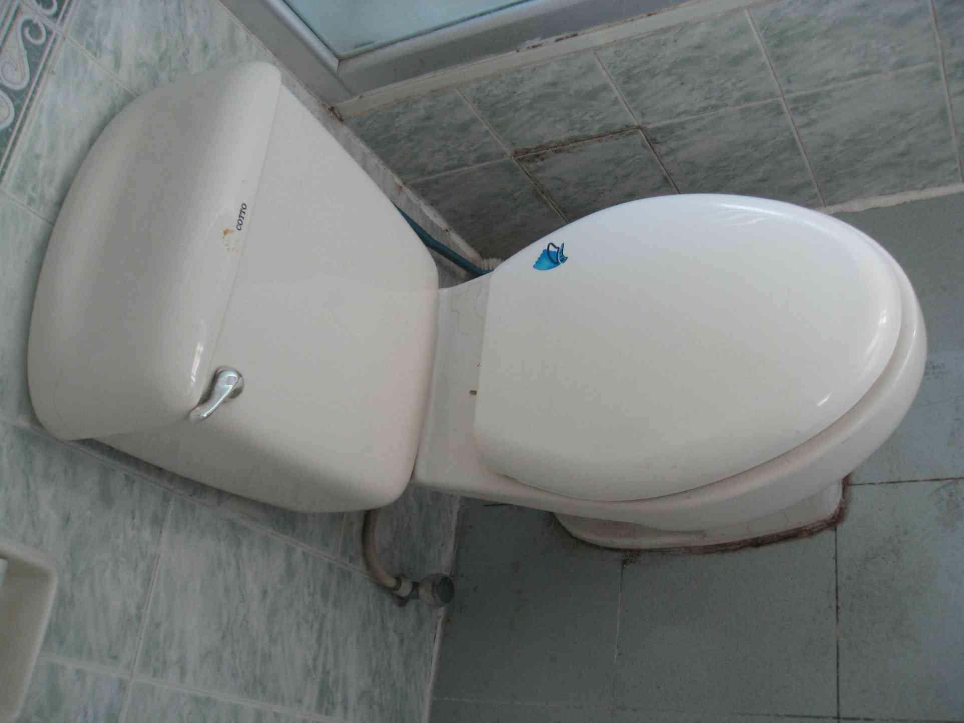 马桶水槽的结构图